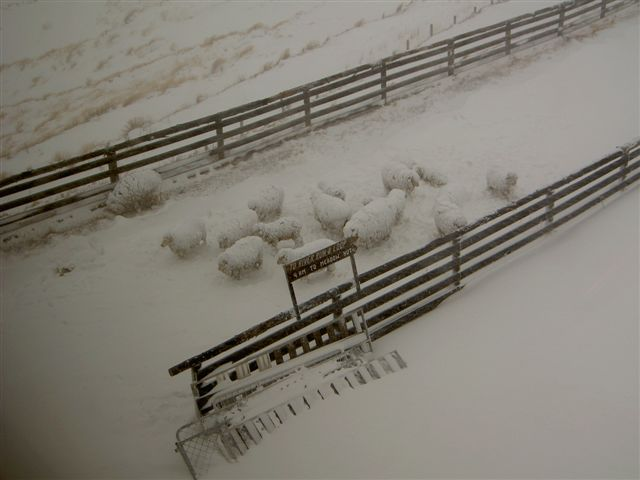 First Snow for the 2006 season at Snow Farm, New Zealand